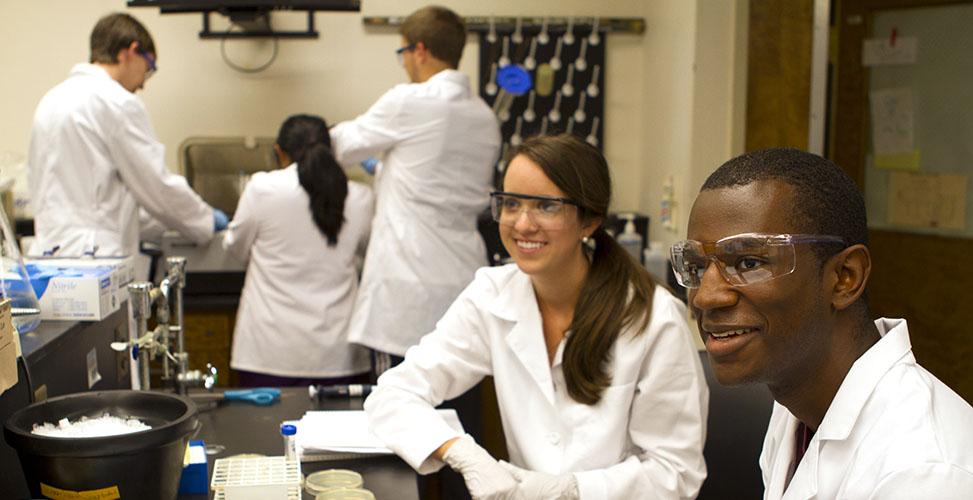 Undergraduate Labs